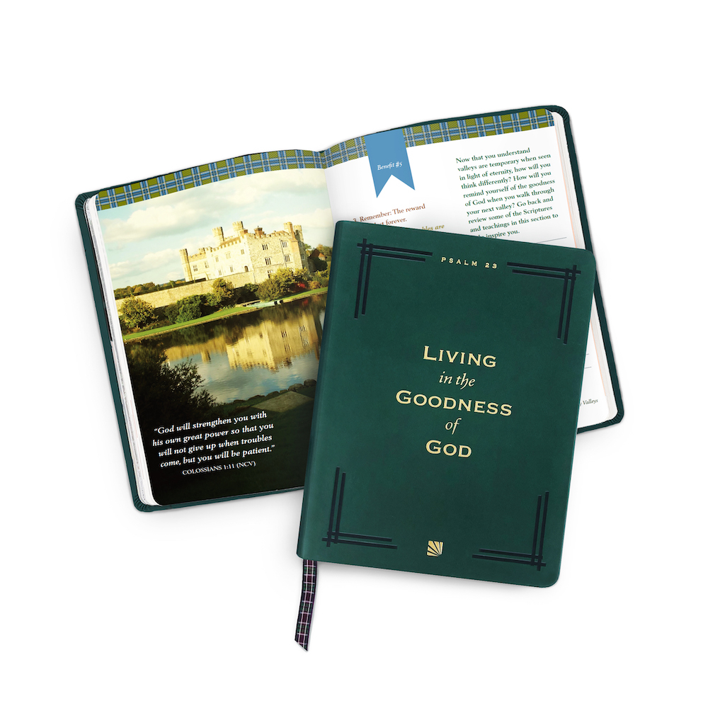 Living in the Goodness of God Guided Experience